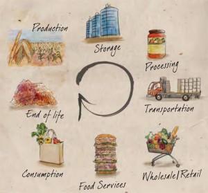 Il ciclo di vita del cibo - Fonte FAO