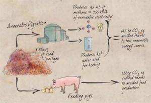 Possibile riutilizzo dei cibi destinati alla discarica - Fonte FAO