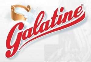 Le Mitiche Galatine: Con Latte, Senza Glutine